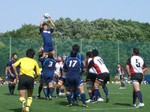 1_lineout2