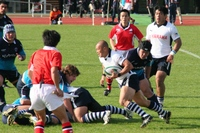 Yatomi1